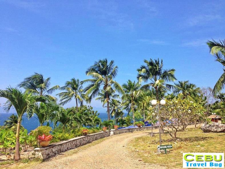 As you get into the resort all you see is green and blue - nature's colors.